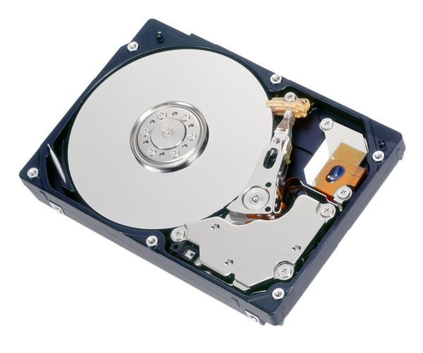 """HDD SAS 600GB 10k 2.5"""" für DX60S3"""